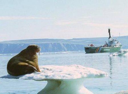 Esperto artico russo, permafrost rischia di sparire in 10 anni